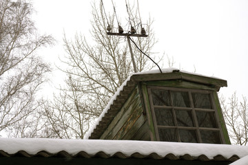 roof of the house in the snow