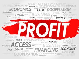 PROFIT word cloud, business concept