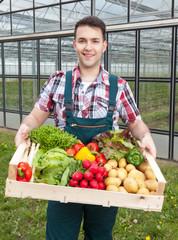 Landwirt mit Gemüse vor seinem Gewächshaus