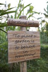 educational garden in a school