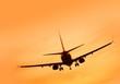 Aircraft Landing at Sunset - 80370082