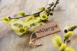 Allergie - 80370438