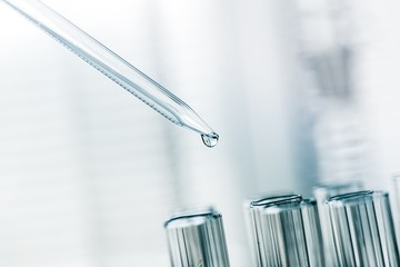 Lab. A close-up of a laboratory glass pipette with emerging drop