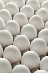 Organic white eggs in carton crate