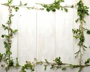 ルッコラの花 フレーム 白木材背景