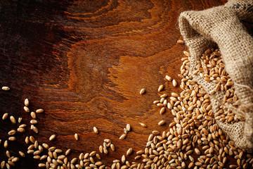 wheat grain on wooden table