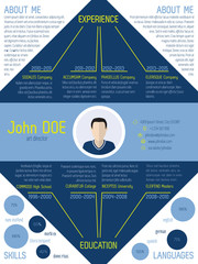 Modern cv resume in blue and green colors