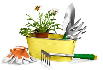 Agriculture. Garden tools isolated on white