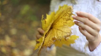 Bride and autumn