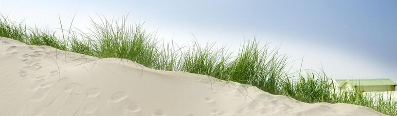 sand dunes near the beach with a blue sky