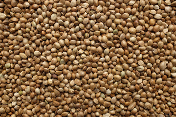 Hemp seeds background