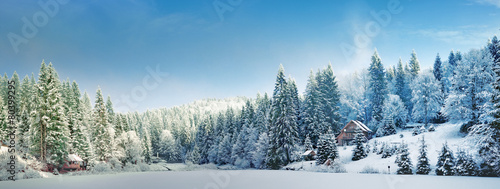 Панорама зимним утром в Карпатах - 80399295