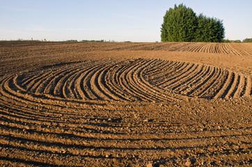 freshly cultivated farmland field