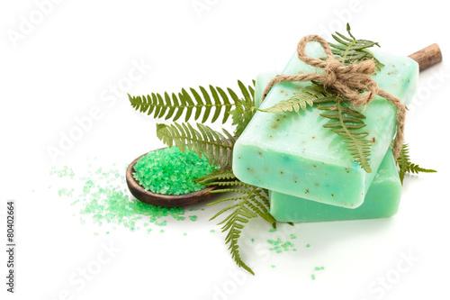 Leinwandbild Motiv Fern soap.