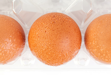 High angel shot of brown eggs and water drops in plastic package