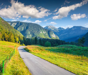 Colorful summer morning in the Triglav national park