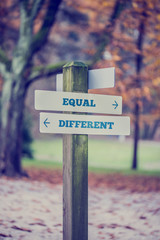 Rustic wooden sign in an autumn park with the words Equal - Diff