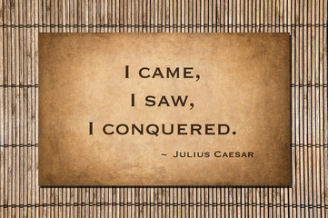 I came, I saw, I conquered. Caesar's famous quote.