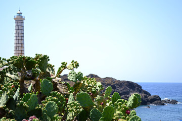 Beach Ustica with ancient lighthouse - Sicily