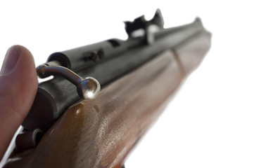Rifle Isolated