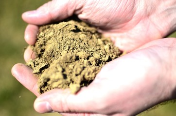 Male hands holding soil on land