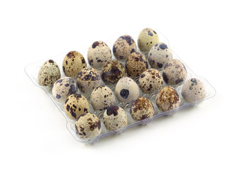 Many quail eggs in plastic package isolated closeup