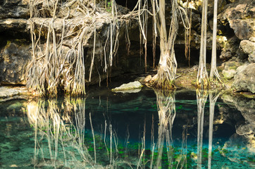 X-Batun Cenote - turquoise fresh water with water lilies