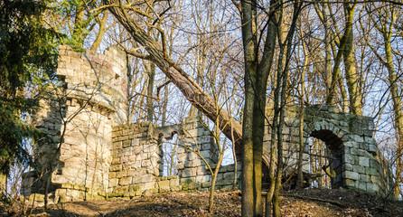 Ruins of the old castle in Striysky Park in Lviv