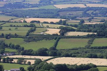 fields in Dartmoor