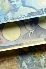 New Zealand dollar ニュージーランド・ドル 日本円 Japanese yen