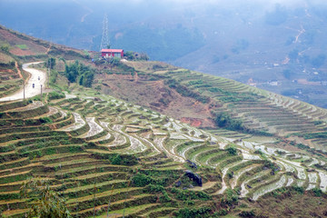 Rice terraces on a rainy day outside Sapa in northern  Vietnam.