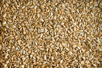 Healthy fresh roasted hulled sunflower seeds