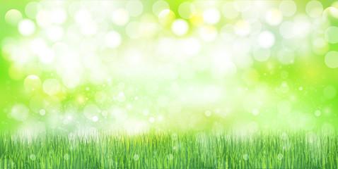 草 空 背景