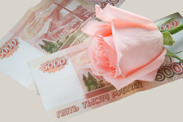Rose and money