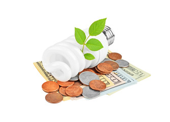 Energy saving light bulb and money and plant on white