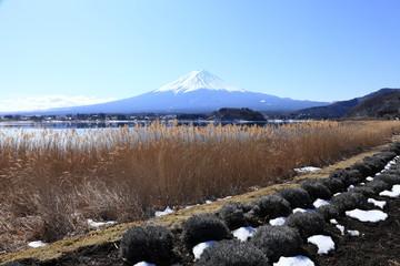冬の河口湖と富士山