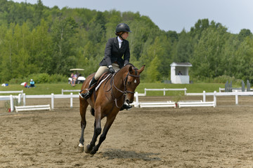A horsewoman obstacle in preparation