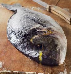 Fresh sea bream on a wooden cutting board