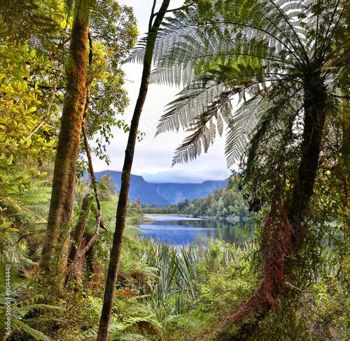 Foto op Canvas Nieuw Zeeland Lake Matheson, New Zealand - HDR image