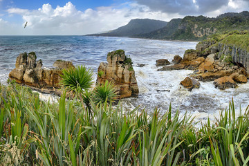 Coastline near Pancake Rocks, New Zealand - HDR panorama