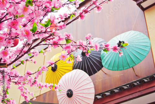 Foto op Plexiglas Japan Sakura flower with wooden umbrella and house background