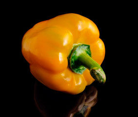 Yellow pepper on a black background.