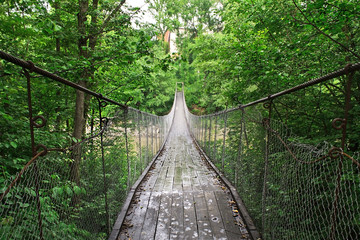 suspension bridge over the river in the green thickets