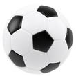 Soccer ball isolated on white background. 3d illustration high r