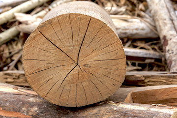 Closeup log pattern horizontal natural background