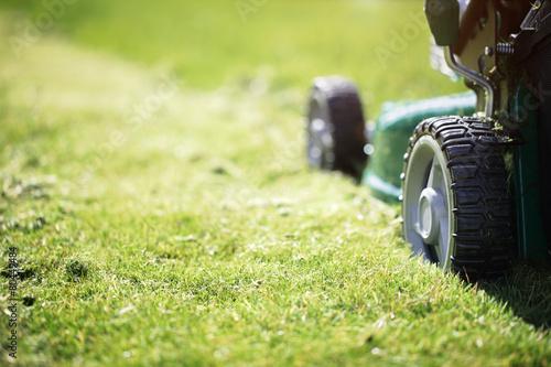 Papiers peints Jardin Mowing the grass