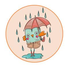 Pollito bajo la lluvia