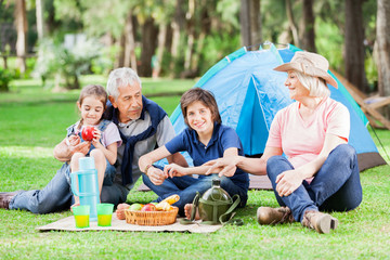 Multi Generation Family Camping In Park
