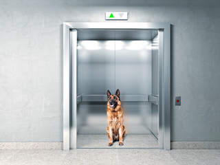 elevator security