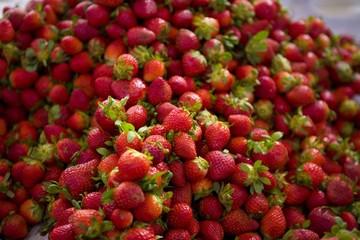 maroc Agadir souks marché aux fruits et légumes